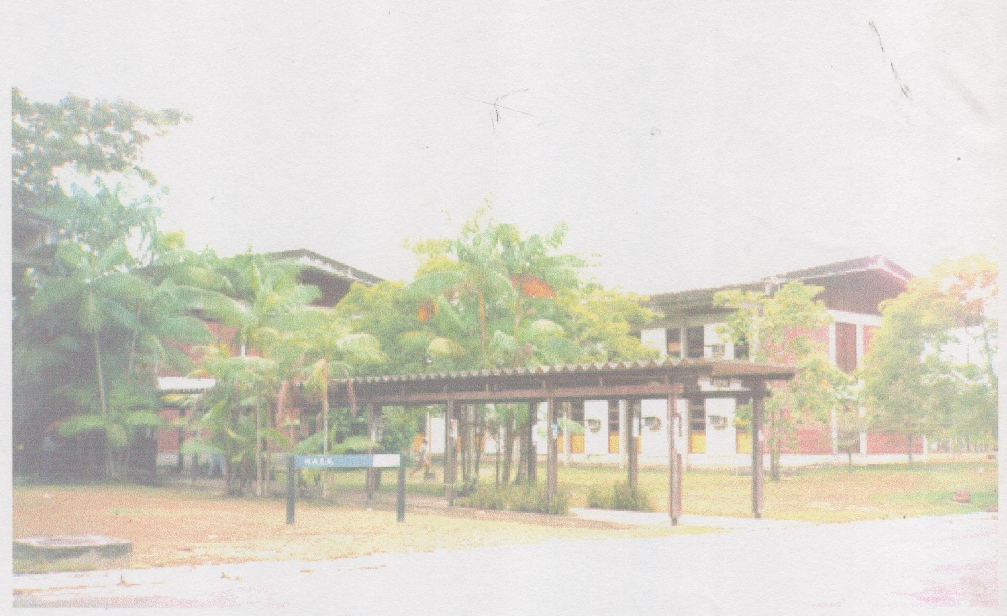 Foto Entrada NAEA 1997