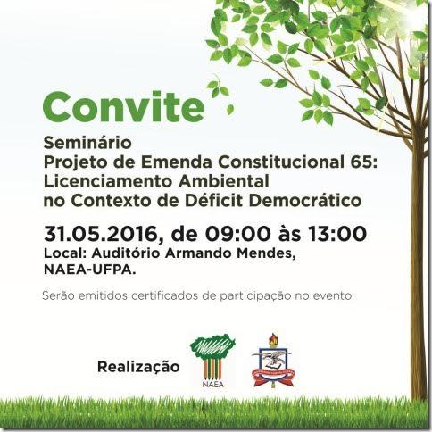 Foto Seminário Projeto de Emenda Constitucional 65 Licenciamento ambiental no contexto de deficit democrático